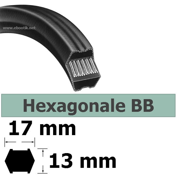 COURROIE HEXAGONALE BB53
